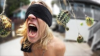 Blindfolded Cactus Gauntlet!