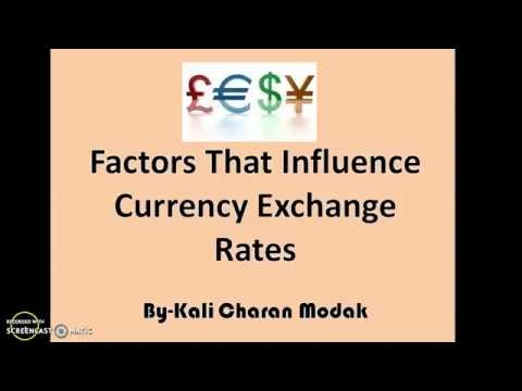 Factors That Influence Currency Exchange Rates