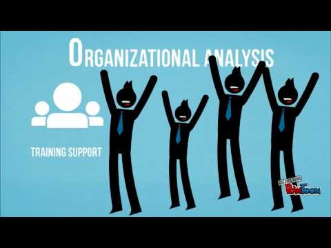 analysing organisation The key insights from meyerson & martin (1987) indicate that organisation is a culture imbued with the collective beliefs, meanings and values of the people a.