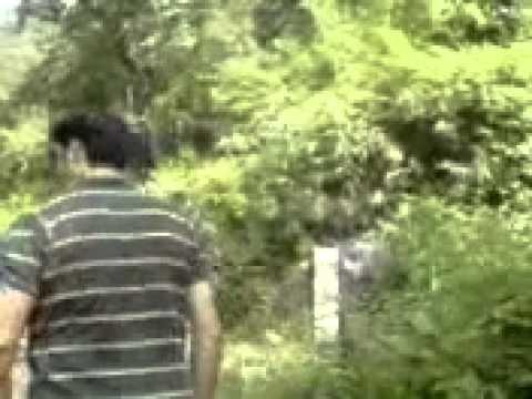 Kanva Rishi Ashram Mp4