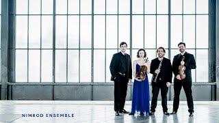 Nimrod Ensemble Berlin: Trailer
