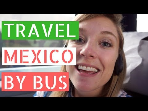 Traveling Mexico By Bus // Gringos in Mexico City Vlog
