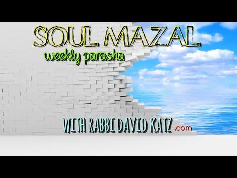 Parashas Chukas [Ramdu]   Kabbalah of a Red Heifer [VIDEO]