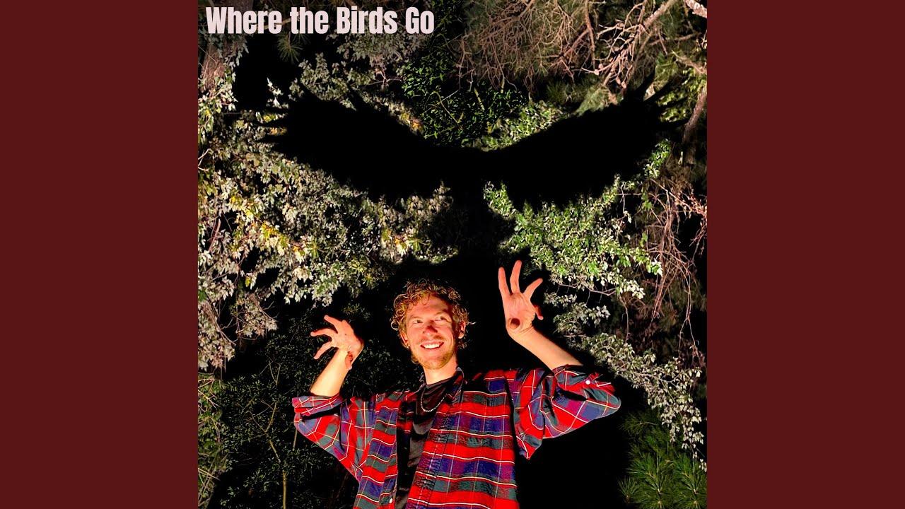 Where the Birds Go (feat. Emma Yaniger)
