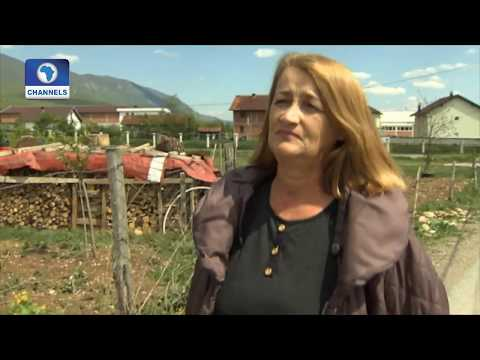 Eco@Africa: How A German Internet Search Machine Supports Reforestation Projects In Burkina Faso