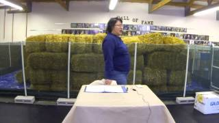 Barn Hunt Q&a With Robin Nuttall At The Sheboygan Dog Training Club