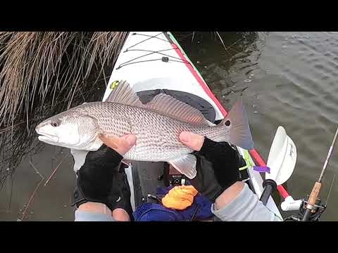 Inshore Kayak Fishing The Outer Banks Of NC