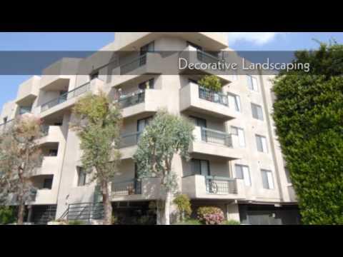 Ivy Apartments Sherman Oaks