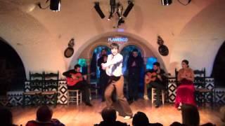 Flamenco Barcelona - David Romero @TablaoCordobes - 1/12/2016 (II)