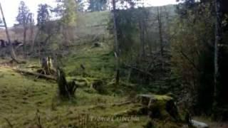 Jagd im Emmental (Franco Catocchia)