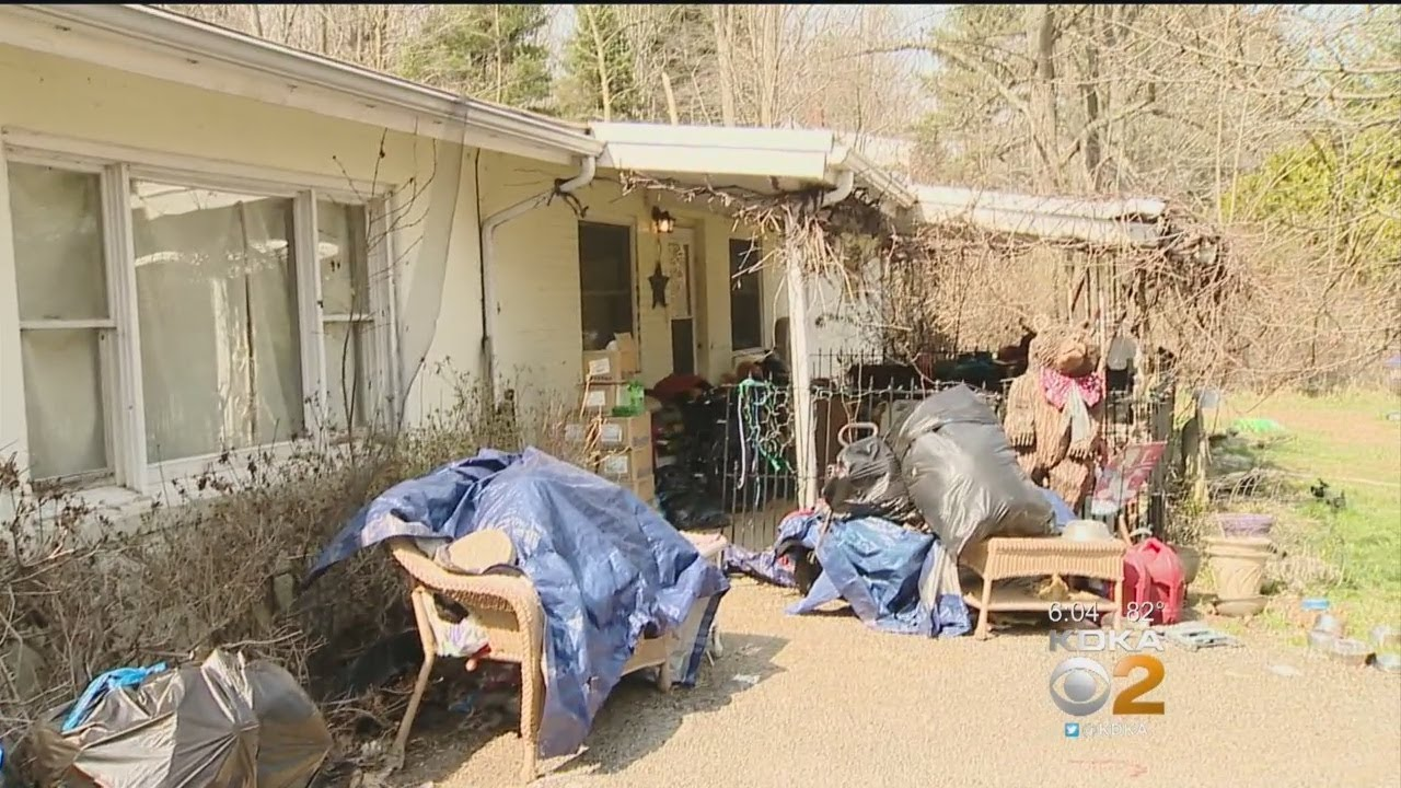 Dogs, Cats, A Turtle & A Deer Found Living In Filth Inside Home