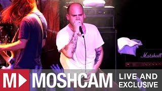The Bronx - Young Bloods | Live in Sydney | Moshcam