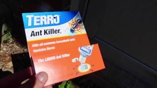 TERRO Liquid Ant Gel (TIMELAPSE + BEFORE & AFTER)