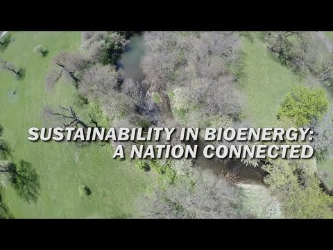 Sustainability in Bioenergy: A Nation Connected