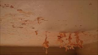 removal of painted embossed ceiling wallpaper