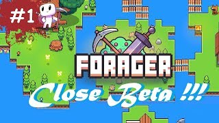 forager impressions