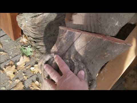 Wood Slab Treasure Hunt for Coffee Table Project