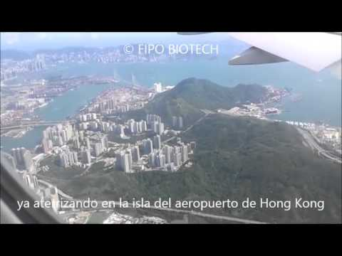 FIPO BIOTECH viaje a Hong Kong proyecto Stevia Rebaudosidos