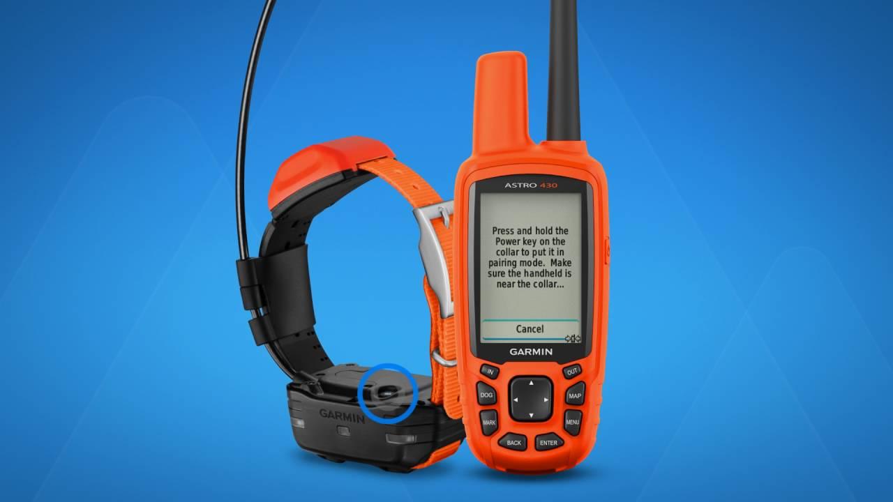 garmin astro 430 and 900 pairing with a dog collar youtube rh youtube com Garmin Astro 320 Sale Garmin 320 Updates