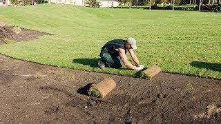 Газон на даче своими руками. Делаем газон сами(Газон на даче лучше создавать из нескольких видов трав -- он будет более долговечным. Также трава для газона..., 2014-06-21T22:12:13.000Z)