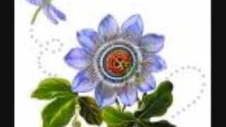 Nazrul Song Mor Ghum Ghore