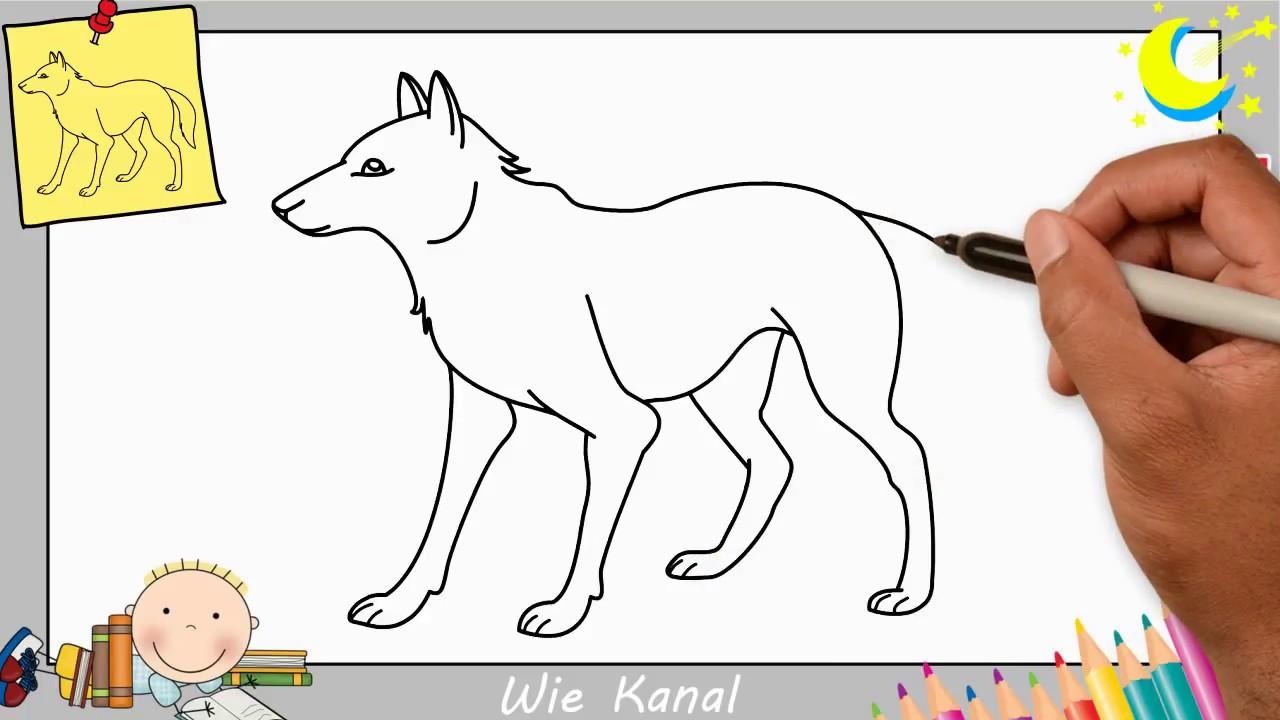 Wolf Zeichnen Lernen Einfach Schritt Für Schritt Für Anfänger