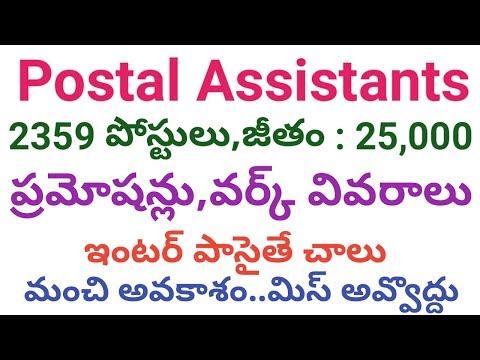 2359 Postal Assistants Job Profile(Work,Salary,Pramotions)