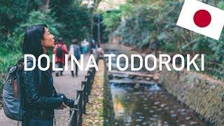 Gdzie znaleźć zieleń w Tokio? - Dolina Todoroki