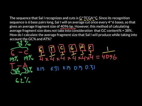 How to Calculate Restriction Enzyme's Average Fragment Size