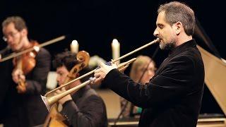 Play Concerto for violin, cello, trumpet, strings & continuo in D major, TWV 53:D5