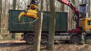 MAN LKW truck Hakenlift container carrier Gierkink Fällgreifer felling grapple GMT 035