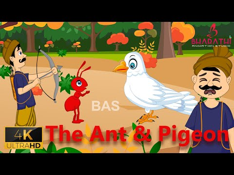 The Ant And Pigeon Story In English   Story For Kids   Bharathi Animation Studios English