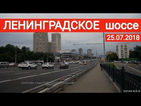Ленинградское шоссе, прогулка //  25 июля 2018