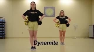 2017 Vanderbilt Cheerleading Tryout Material
