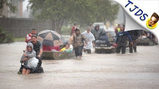 Houston Newsman Calls Victims Trying To Survive