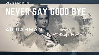 Never Say Goodbye | Dil Bechara | A. R. Ameen | A. R. Rahman | Sushant Singh Rajput | Sanjana Sanghi