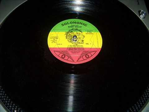 Bunny Wailer Dreamland Dub -  Dub Disco LP Dubwise Selecta
