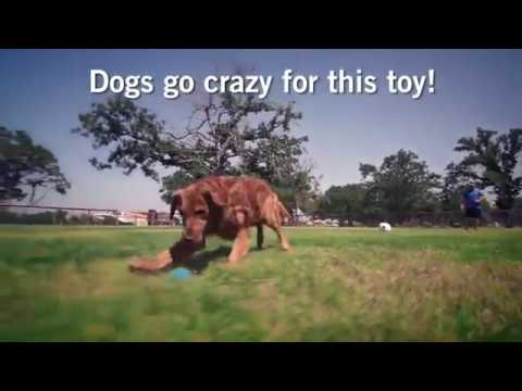 iFetch Too Interactive Ball Thrower for Dogs