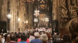 Mozart Requiem in Vienna's Stephansdom