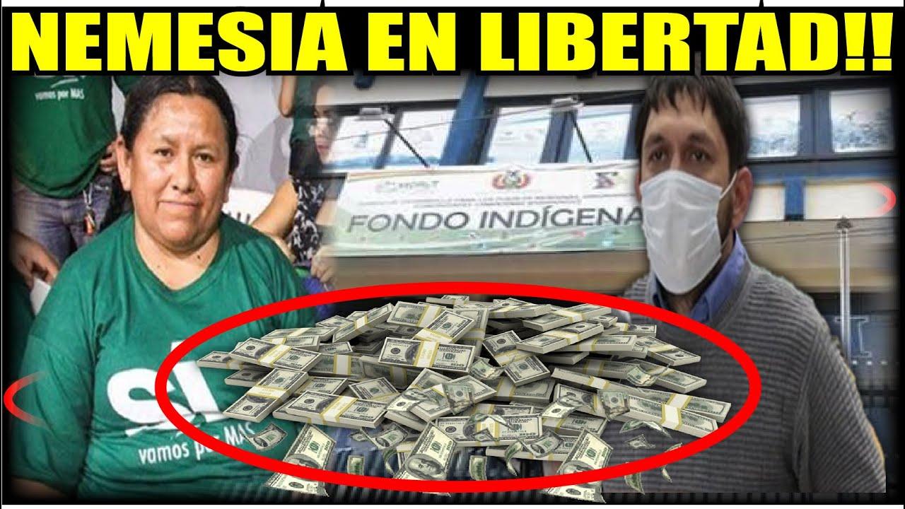 Nemesia Achacollo en libertad y Gobierno se escandaliza
