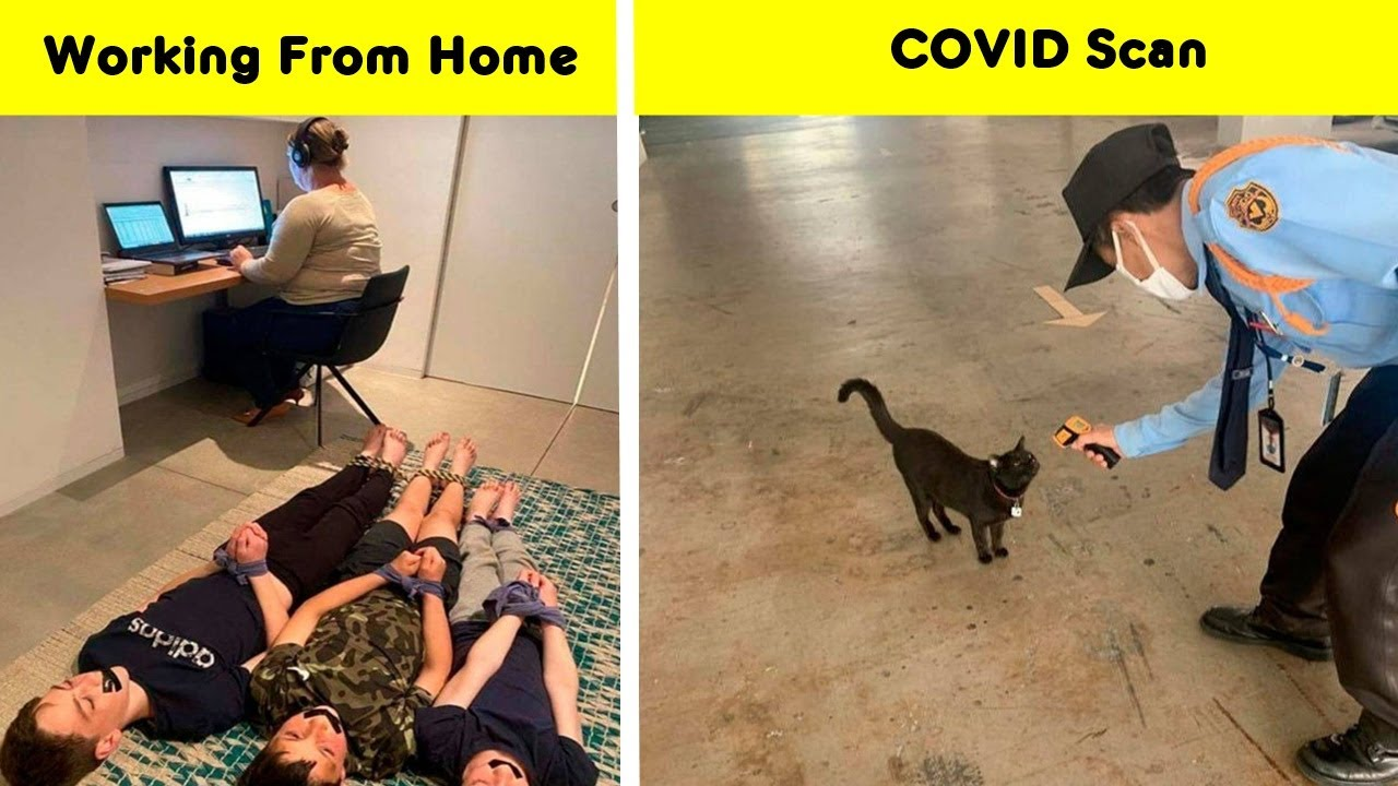 Coronavirus Memes That Will Make Your Quarantine A Little Better