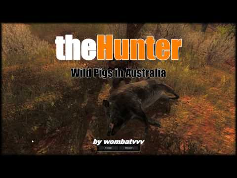 theHunter - General Game Introduction & Feral Hog Hunting (2016)