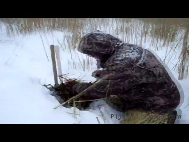Постельное белье из поплина иваново зима лето