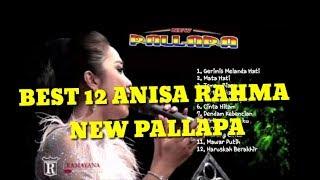 Download lagu ANISA RAHMA NEW PALLAPA 12 lagu enak MP3