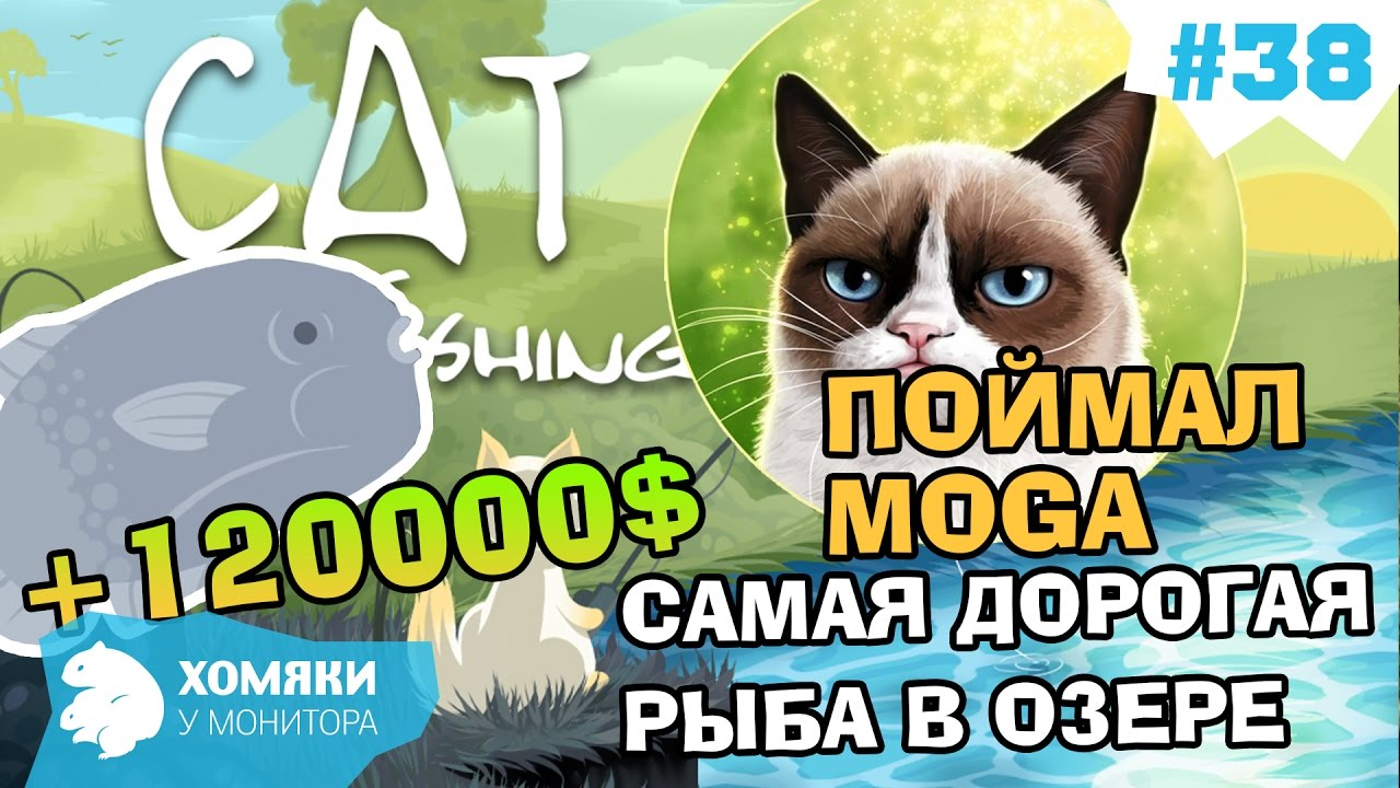 cat goes fishing how to catch moga