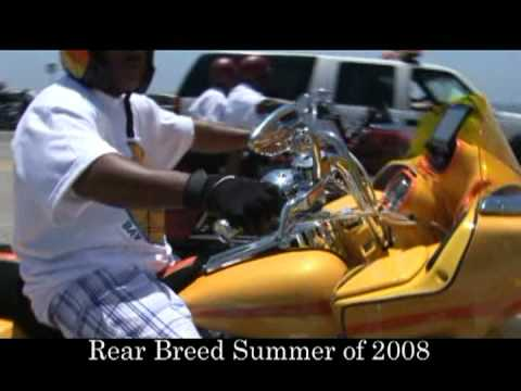 Harley Davidson Los Angeles >> Rare Breed Picnic of 2008 Featuring Kings of Cali,Rare Breed by Digital Dreams - YouTube