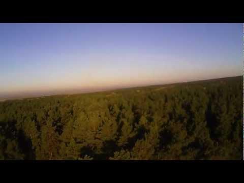 Зеленое море тайги