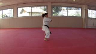 Heian Godan - Karate Training Sonia Fiuza