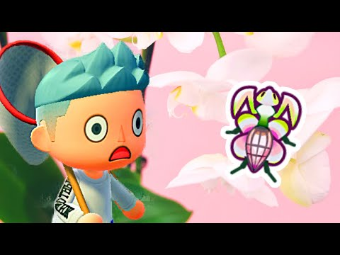 My Orchid Mantis Farm In Animal Crossing New Horizons Youtube