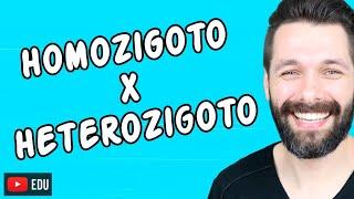 HOMOZIGOTO E HETEROZIGOTO - DIFERENÇAS - Genética | Biologia com Samuel Cunha